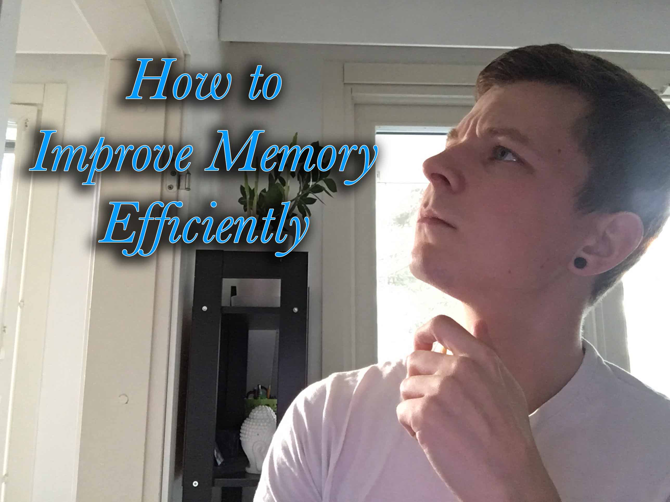 How to Improve Memory Efficiently - the Beginner s Guide