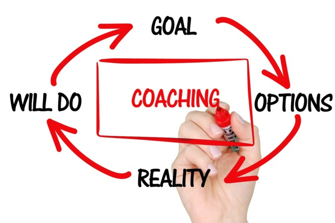 what is life coaching